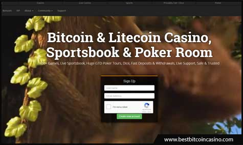 Betcoin.ag accept Bitcoin, Litecoin, and Ethereum