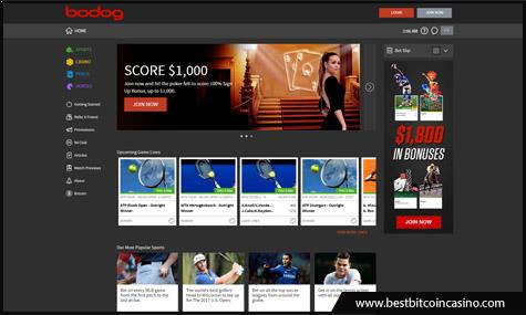 Bodog offers casino, sportsbook, and poker room