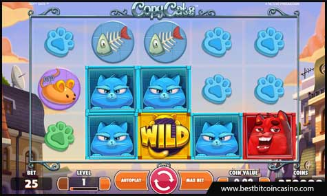 NetEnt launches new Copy Cats slot