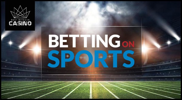 What to Expect from Betting on Sports 2017 Programs