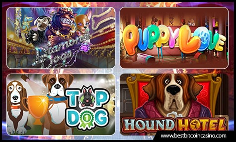 Online Slots that Feature Dogs
