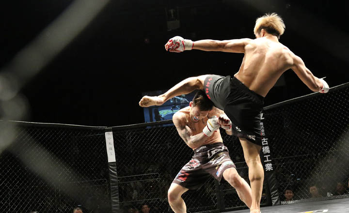 MMA Crypto Sports Betting Not Yet Affected by COVID-19