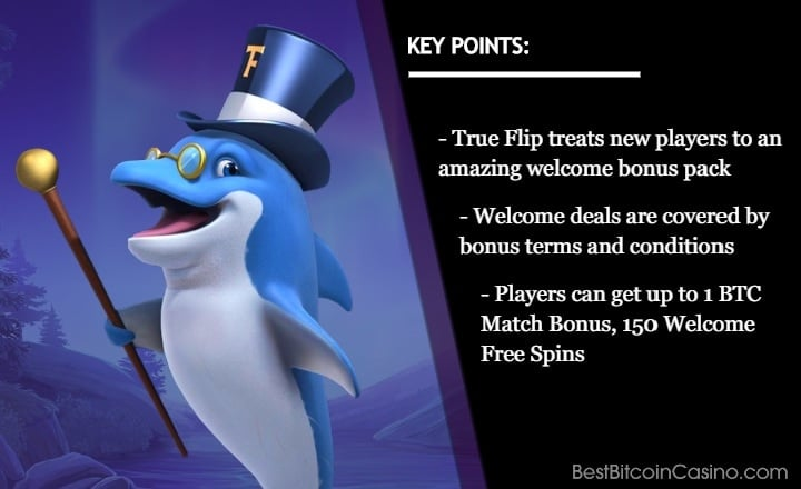 1 BTC Bonus, 150 Free Spins Await New True Flip Casino Players